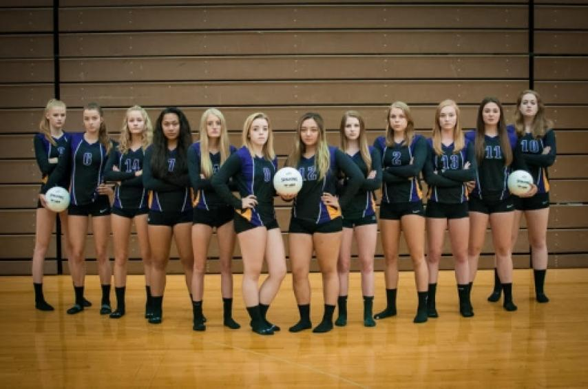 Lake Stevens Volleyball 2017